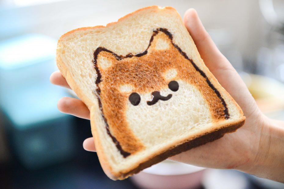 Shiba-sur-un-toast